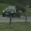 В 100 км от Минска лось прыгнул на машину: перепрыгнул тросовое ограждение и выбил стекло в ехавшем авто (ВИДЕО)