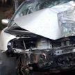 ДТП произошло в Лиозненском районе: выбежала косуля