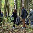 «Чистый лес»: экологическая акция объединит добровольцев по всей стране