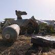 Новые подробности крушения Boeing 737 в Эфиопии: автоматическая система давала сбои и направляла самолёт вниз