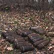 Боевые снаряды нашли в Оршанском районе