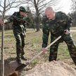 Президент принял участие в посадке деревьев на «Линии Сталина»