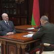 Президент Беларуси и министр МЧС обсудили пожароопасную ситуацию в регионах