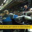 Минский автомобильный завод поставил партию газомоторных автобусов в Новосибирск