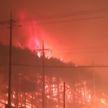 Лясныя пажары ў Паўднёвай Карэі: некалькі чалавек загінулі, цалкам згарэлі больш за 60 фермаў разам з жывёлай