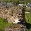Международный день памятников и исторических мест отмечают 18 апреля