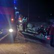 В Полоцке легковушка вылетела в кювет, три человека госпитализированы