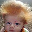 Такие смешные! 10 фото малышей, на которые вы точно захотите взглянуть!