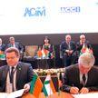 Выгодные для Беларуси контракты подписаны в Душанбе