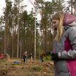 В Беларуси стартовала «Неделя леса»