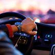 В Минске водители смогут ездить бесплатно в общественном транспорте