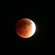 NASA ведёт прямую трансляцию лунного затмения