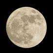 В Японии отбирают участников для проекта освоения Луны