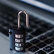 Задержана группа кибермошенников, причинивших ущерб более $500 тысяч