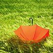 Ливни и град: в Беларуси объявлен оранжевый уровень опасности на 16 июля