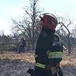 Беларуси за 9 месяцев при пожарах погибли 436 человек