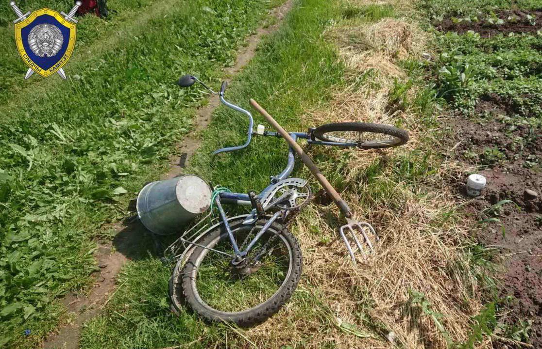 В Миорском районе Витебской области на территории садового товарищества обнаружили труп мужчины.